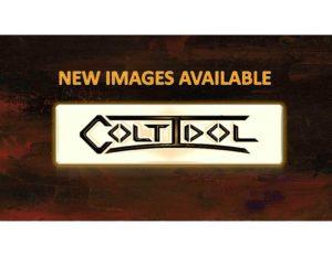 https://www.coltidolart.com/wp-content/uploads/2019/05/1-page-new-image-catalog-1-300x232.jpg